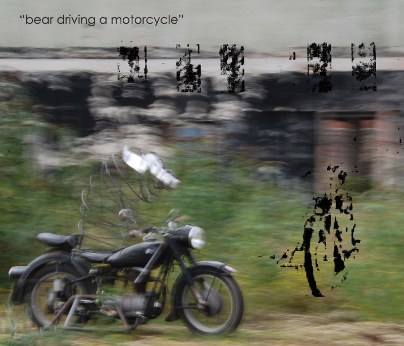 bear driving a motorcycle, Michael Toepffer, Mitokg