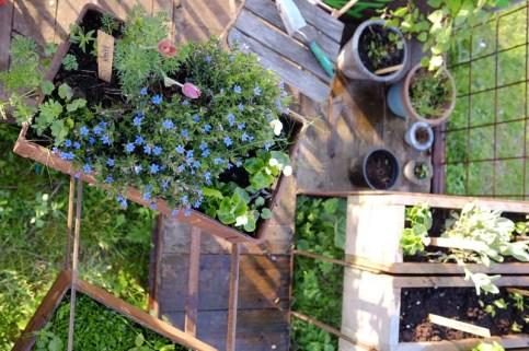 gardening, Michael Toepffer, Mitokg