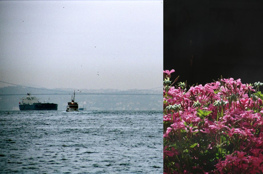 """Blumen"" Istanbul 2005"